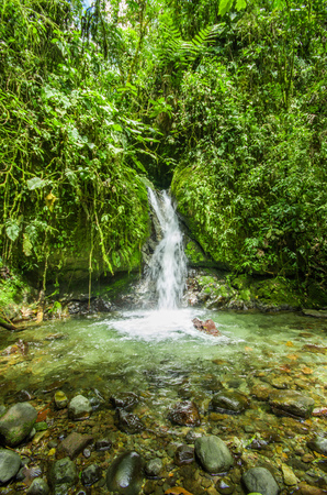 Beautiful small waterfall in green forest with stones in river at Mindo