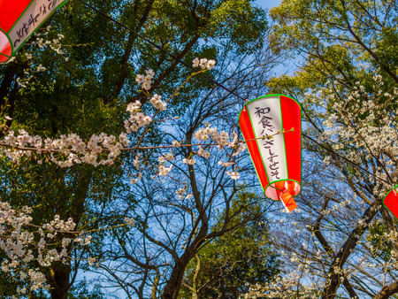 Tokyo, Japan - August 24, 2017: Close up of a japanesse letter ins a lanter, hanging during the cherry blossoms festival in Ueno Park Editorial