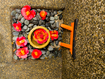 cattleya: Close up of a set of cattleya orchid red flowers and stone as oblation over a stoned ground in Japan Stock Photo