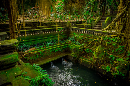 Pond with some stoned figures at Monkey Forest Sanctuary in Ubud, Bali, Indonesia