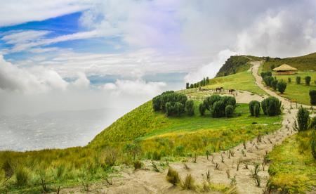 Pichincha 화산, 일부 네이티브 andes 식물과 말, 키토, 에콰도르에서 Pichincha 산 꼭대기에서 일반적인 오두막와 말에서 파노라마보기