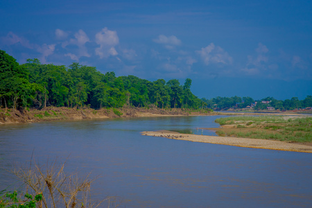 Beautiful view of Chitwan National Park with a river, mainly covered by jungle