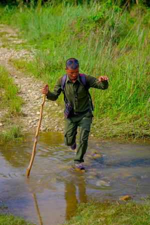 CHITWAN, NEPAL - NOVEMBER 03, 2017: Tourist guide using a wooden stick to cross a puddle in the forest in Chitwan National Park, mainly covered by jungle.