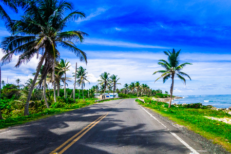 Palm trees in one side of a road in San Andres, Colombia in a beautiful beach background