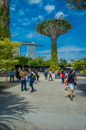 SINGAPORE, SINGAPORE - JANUARY 30, 2018: Unidentified people walking under a supertree at Gardens by the Bay. The tree-like structures are fitted with environmental technologies that mimic the ecological function of trees Editorial