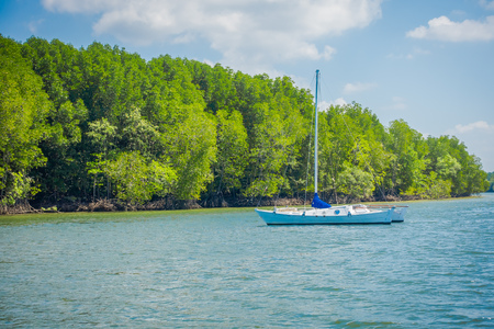 Outdoor view of beautiful yatch close to a mangrove in Krabi Province, Andaman Sea, South of Thailand