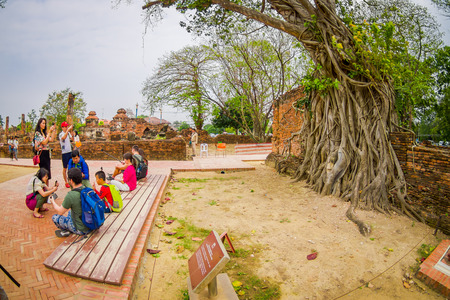 AYUTTHAYA, THAILAND, FEBRUARY, 08, 2018: Unidentified people taking selfies at outdoors of Buddha head overgrown by fig tree in Wat Mahathat. Ayutthaya historical park
