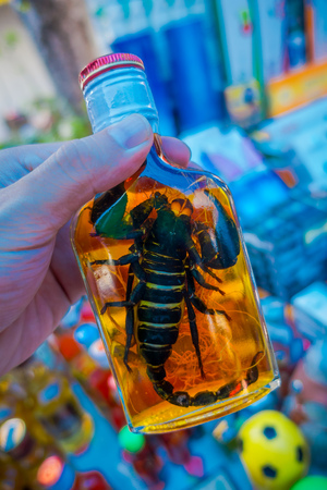 Close up of scorpion animal inside of Whiskey flask prepared by locals on an island off the coast of Laos, at the Golden Triangle at Chinatown. These brews contain live scorpion