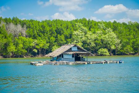 タイ南部クラビ県のゴルゲオプスブルーアスキーのマングローブに近い川に浮かぶ古くて損傷した家の屋外ビュー 写真素材 - 97902433