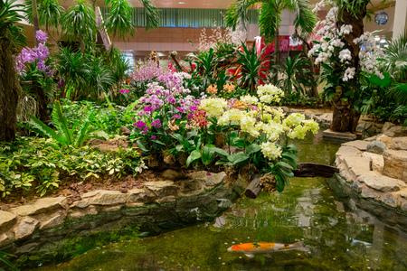 Vue intérieure de personnes marchant dans un petit jardin avec des plantes à l'intérieur de l'aéroport de Singapour Changi. L'aéroport de Singapour Changi est le principal aéroport civil Banque d'images