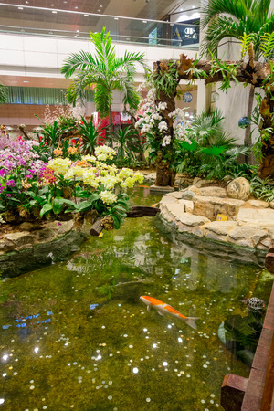 BANGKOK, THAILAND - FEBRUARY 09, 2018: Indoor view of people walking in a small garden with plants inside of Singapore Changi Airport. Singapore Changi Airport is the primary civilian airport Editöryel