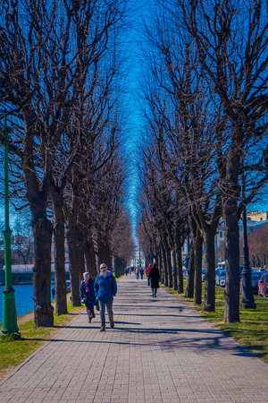 ST. PETERSBURG, RUSSIA, 02 MAY 2018: Outdoor view of unidentified people walking in the park surrounding of dry trees close to the Moika river during a gorgeous sunny day in St Petersburg