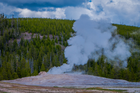Beautiful view of old faithful Geyser Basin located in Yellowstone National Park, surrounded by vapor with a green mountain behind in gorgeous sunny day in USA