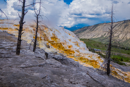 Canary Springs on terraces of Mammoth Hot Springs in Yellowstone National Park, Wyoming
