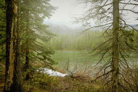 Views of the Jenny Lake in the Grand Teton National Park, Wyoming in a foggy day in USA.