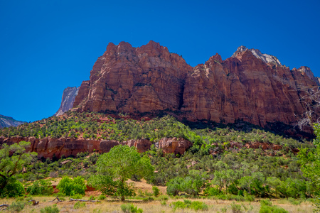 Beautiful outdoor view of huge mountains in Zion National Park, Utah, USA with a grogeous sunny day and blue sky background.