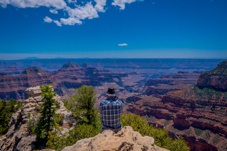 Grand Canyon,Arizona USA, JUNE, 14, 2018: View of unidentified man wearing a plaid shirt and hat, using his cellphone in front of Grand Canyon National Park from the North Rim of the canyon Editorial