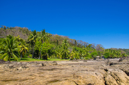 Beautiful landscape of rocky beach and trees in Playa Montezuma in gorgeous blue sky and sunny day in Costa Rica. Stock Photo