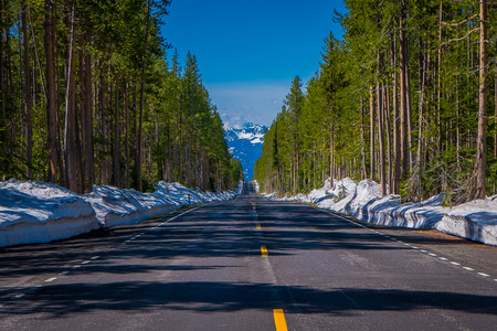 Road from Yellowstone National Park to Grand Teton National Park, Wyoming, USA. Stock Photo