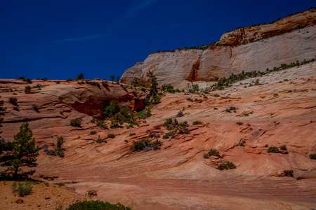 Closeup of Mountain Landscape in the Valley in Zion National Park, Utah, USA.