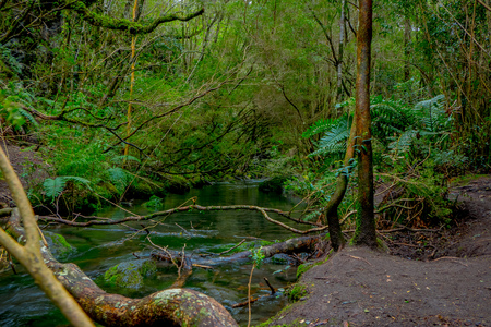 Beautiful clear creek located in Petrohue, surrounding of vegetation in Llanquihue Province, Los Lagos Region Stock Photo