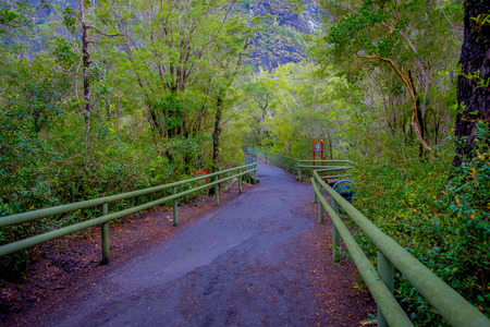 Beautiful path inside the forest with metallic fences at each side, for protecting the tourists from any danger in Saltos de Petrohue, Chile Stock Photo