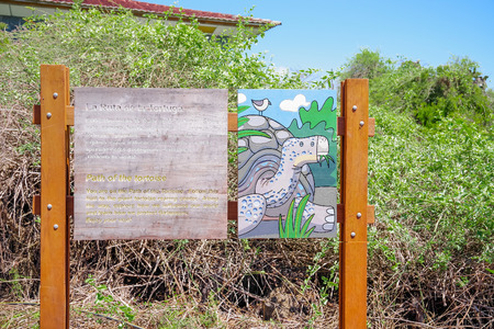 GALAPAGOS, ECUADOR- NOVEMBER, 11 2018: Outdoor view of informative sign in a wooden structure of path of tortoise in Galapagos Island