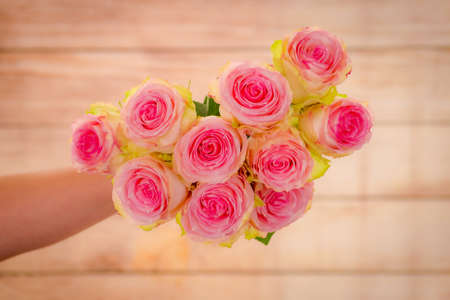 A bouquet of Esperance roses variety, studio shot, pink flowers. High quality photo