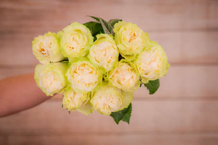 A bouquet of Moonstone Garden roses variety, studio shot, white flowers. High quality photo Banque d'images
