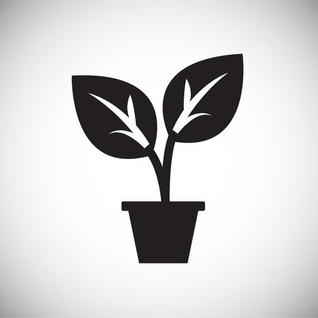 Plant in pot on white background icon Illustration