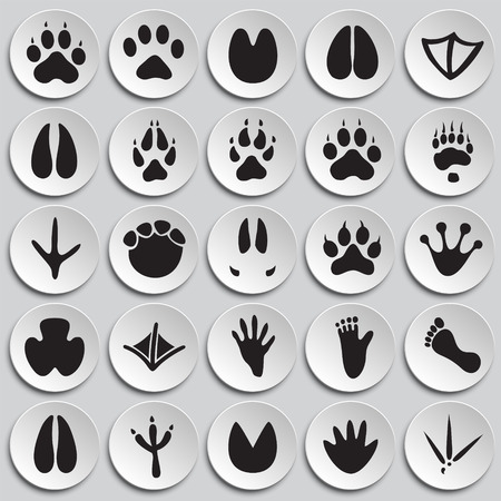 Animal foot prints icons set on plates background for graphic and web design, Modern simple vector sign. Internet concept. Trendy symbol for website design web button or mobile app