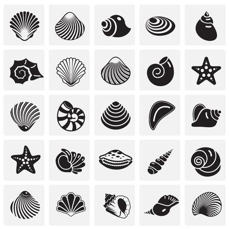 Sea Shell-pictogrammen ingesteld op vierkante achtergrond voor grafisch en webdesign. Eenvoudig vectorteken. Internetconceptsymbool voor websiteknop of mobiele app.