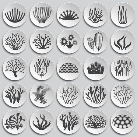 Coral icons set on background for graphic and web design. Simple illustration. Internet concept symbol for website button or mobile app.