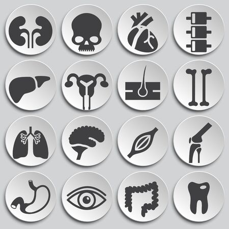 Human organs related icons set on background for graphic and web design. Simple illustration. Internet concept symbol for website button or mobile app