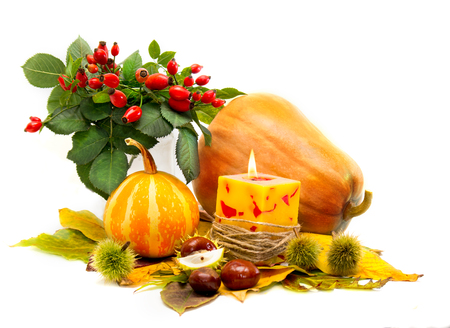 Harvested pumpkins with autumn leaves, chestnuts, rosehip, candle  photo