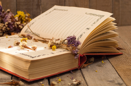 deliberate: Book to write notes with dried flowers, herbs on wooden background. Soft focus, deliberate slight blurring .