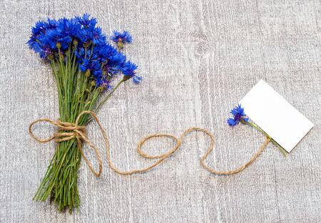 felicitation: bouquet of cornflowers and label for text.
