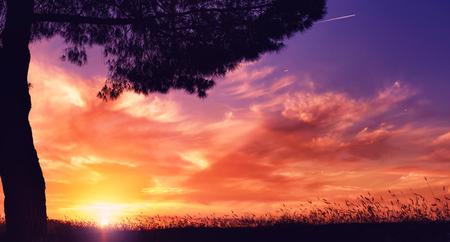 Sunset, summer evening Stock Photo