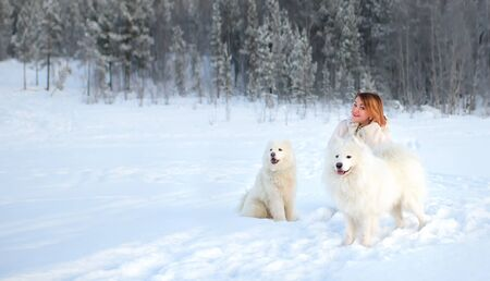 girl and two dogs Samoyed in the winter forest