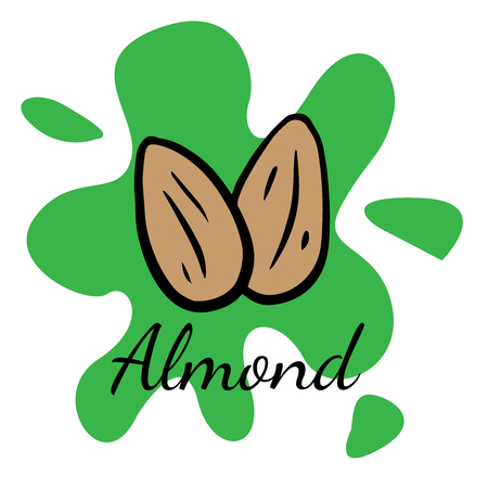 Doodle sketch almond, walnut icon on white background