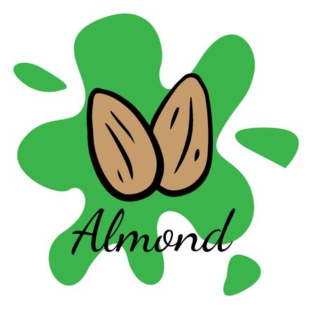 Doodle sketch almond, walnut icon on white background