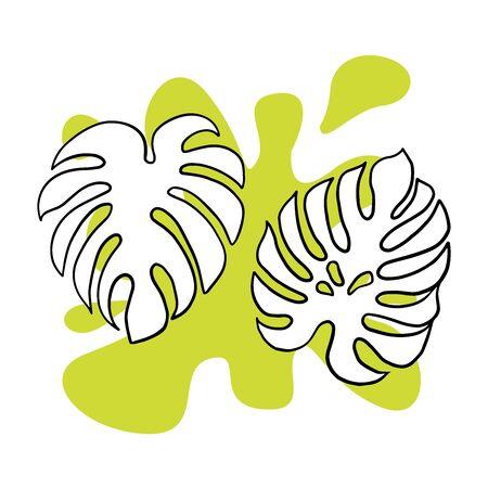 Doodle sketch of monstera leaf, cartoon drawing