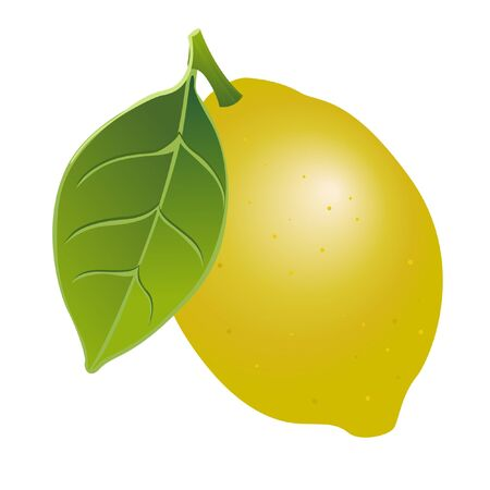 Illustration lemon on a white background