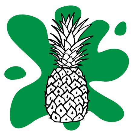 doodle pineapple sketch on white background Stock Illustratie