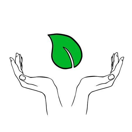doodle sketch hands hold green leaf, take care of nature, on white background