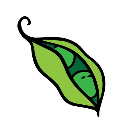 doodle sketch green peas, cartoon drawing on a white background