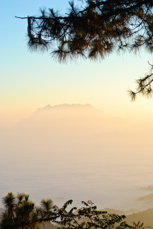 mist north thailand photo