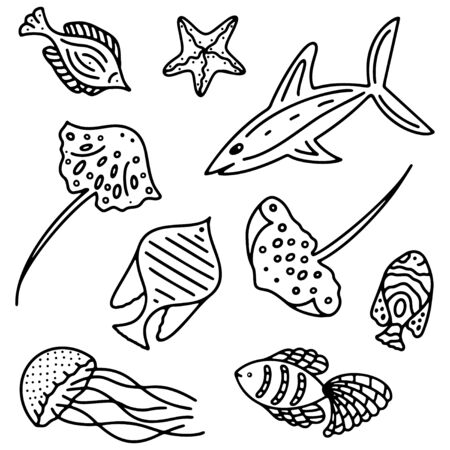 Set of black and white isolated ocean and sea fishes 일러스트