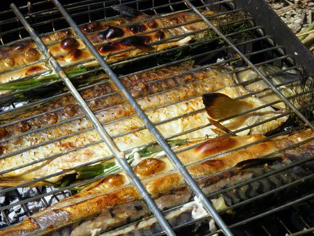 Fish in the lattice is prepared over charcoal with herbs and spices Stock Photo
