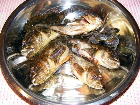 Produced in sea fish after fish catch udchnoy Stock Photo